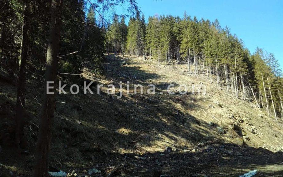 Kalamita