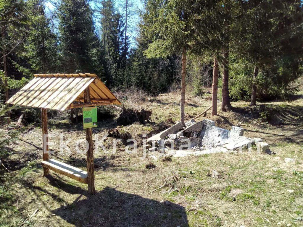 Sila lesných bystrín Račkova dolina