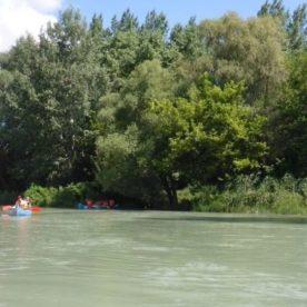 Splav mŕtvych ramien Dunaja