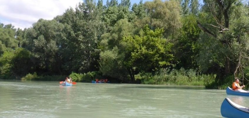 Kanoe splav mŕtvych ramien Dunaja