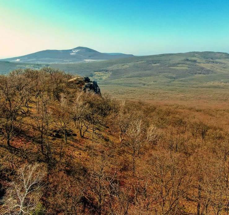 Tríbečské lesy za obcou Jelenec